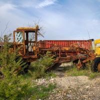 Roadside Rust
