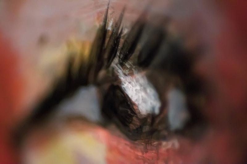 The Poetic Eye