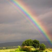 Rainbows-End
