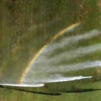 Rainbow Shower