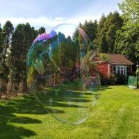 Bubble Garden
