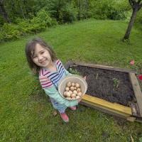 Eggy Garden