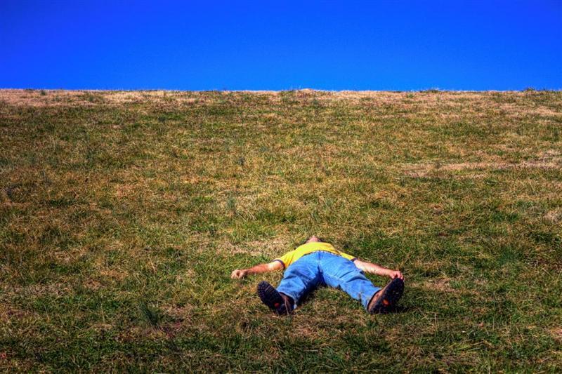 Grass Sky Nap