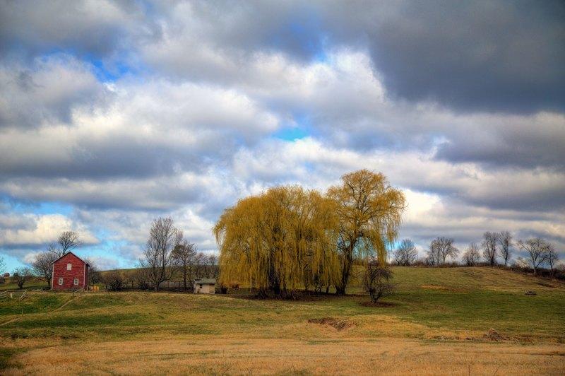 Countryside Charm