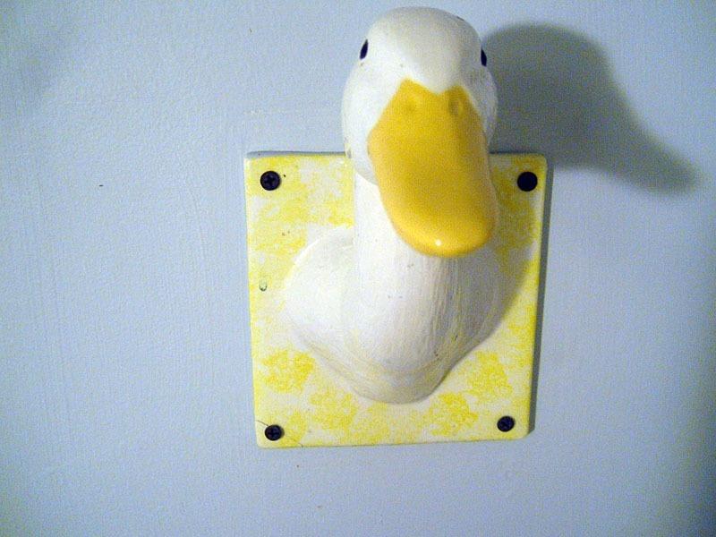 Duck-Duck