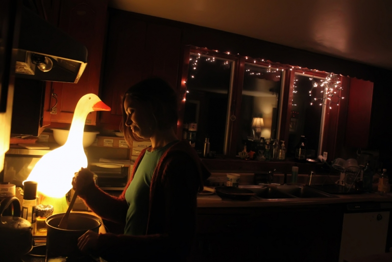 Kitchen-by-Goose-Light