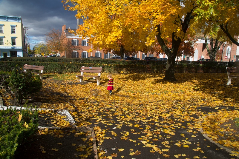 Autumn-Days