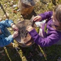 Taking Tea in Pogles' Wood