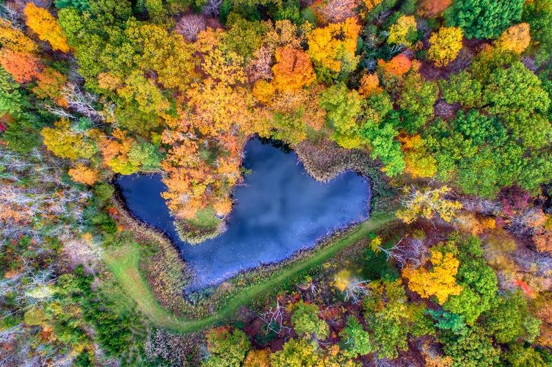 Over Golden Pond