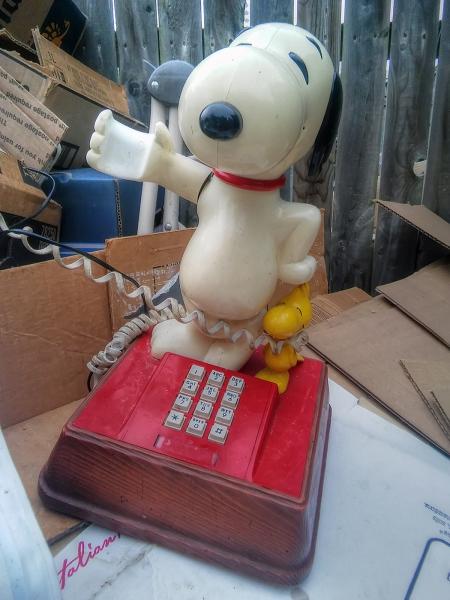 Call-Me-a-Dog